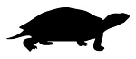 Turtle Silhouette v1 Decal Sticker