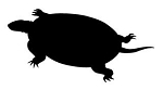 Turtle Silhouette v3 Decal Sticker